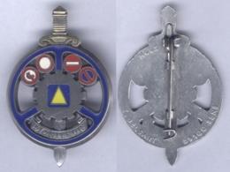 Insigne Du Brevet De Moniteur De Conduite Automobile ( Pommeau Doré ) - Armée De Terre