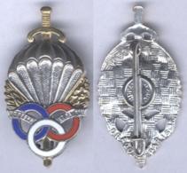 Insigne Du Brevet De Préparation Militaire Parachutiste ( Type II ) - Armée De Terre
