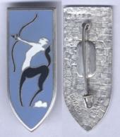 Insigne Du Centre De Tir D'Engins Blindée De Mailly - Armée De Terre