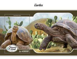 Sierra Leone - 2018 - Turtle, - Yv Bf 1366 - Turtles