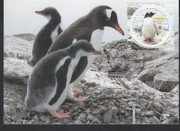 Ukraine MNH** 2020 200 Years Of  Discovery Of Antarctic Mi 1857 Max - Ucrania