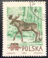 Polska - Poland - Polen - P1/9 - (°)used - 1953 - Beschermde Dieren - Michel Nr. 886A - Animalez De Caza