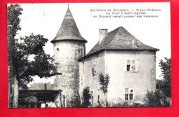 Environs De BOURGOIN - Vieux Château La Tour à Saint Agnien Où Bayard Venait Passer Ses Vacances - Bourgoin