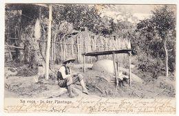 Brazil Brasilien Nova Hamburgo  Porto Alegre Na Roca In Der Plantage 1906 - Porto Alegre