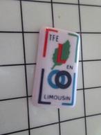 1220 Pin's Pins / Beau Et Rare / THEME : TRANSPORTS / TFE EN LIMOUSIN TRANSPORTS Pin's En Céramique De Limoges - Transportes