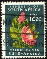 Pays :  12,2 (Afr. Sud : République)  Yvert Et Tellier :  287 B O) - South Africa (1961-...)