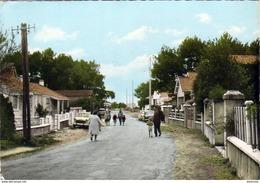 D85  JARD SUR MER  Avenue De La Plage - France