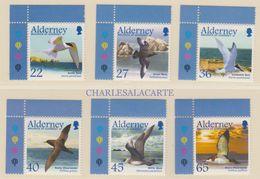 ALDERNEY AURIGNY 2003  MIGRATING SEABIRDS  S.G. 210-215 U.M.  N.S.C. - Alderney