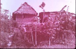 DIAPOSITIVE AFRIQUE TRADITIONNELLE ZOULOU ET XHOSAS Famille ZOULOUE - Diapositives