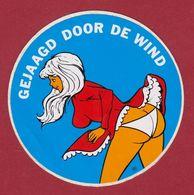 Gejaagd Door De Wind Pin Up Fesses Buttocks Slipje Underwear Sticker Adesivo Aufkleber Autocollant - Stickers