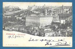 PERUGIA UNIVERSITA' VG. 1902 N°587 - Perugia