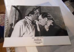"PHOTO EXPLOITATION FILM "" MARIUS "" RAIMU PIERRE FRESNAY 24 X 30,5 Cm - Fotos"