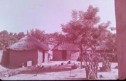 DIAPOSITIVE AFRIQUE TRADITIONNELLE ZOULOU ET XHOSAS Village ZOULOU Caractéristique - Diapositives