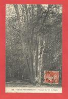 """C.P.A.  ( 77 ) """" FONTAINEBLEAU """"  Forêt De Fontainebleau - Bouquet Du Nid De L'Aigle  2phot. - Fontainebleau"""