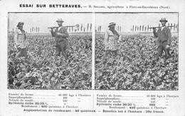 Flers En Escrebieux Canton Douai Publicité Engrais Agriculture Essai Sellier Betteraves - Frankreich