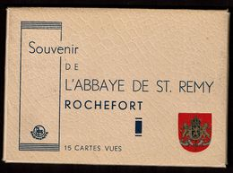 15 Cartes - Souvenir De L'Abbaye De ST. Remy - Rochefort - 10 Scans - Rochefort