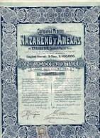 COMPANÍA MINERA NAZARENO Y ANEXAS En Temascaltepec, Estado De Mexico; Bono Fundador - Unclassified