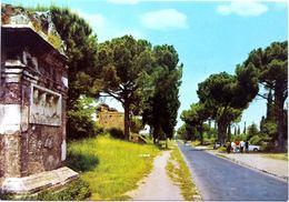 #858   Via Appia Antica Street In Roma - Lazio, ITALY - Postcard - Parks & Gardens