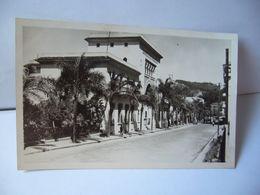24 PHILIPPEVILLE SKIKDA ALGERIA ALGÉRIE AVENUE DE LA RÉPUBLIQUE ET LA BANQUE DE L'ALGÉRIE CPSM FORMAT CPA 1957 SAPHO - Skikda (Philippeville)