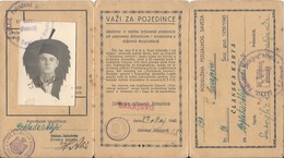 Membership Card DO000185 - Yugoslavia Bosnia Train (Bahn Vlak Voz) Ferijalni Savez Sarajevo 1940 - Documents Historiques