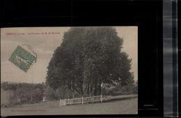 CARTE POSTALE Chenay ( Sarthe ) Le Tombeau De M De BOYVILLE RARE +++ En L'état Sur Les Photos - Otros Municipios