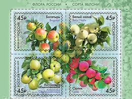 2019-2456-2459 4v-top Russia  FLORA: FRUITS: Strains Of Apple Trees  Mi 2673-2676 MNH - Ongebruikt