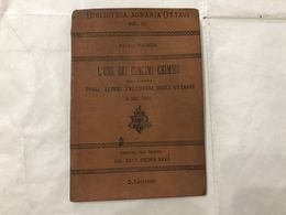 BIBLIOTECA AGRARIA OTTAVI VOL.II°L'USO DEI CONCIMI CHIMICI  PAOLO WAGNER 1903. - Livres, BD, Revues