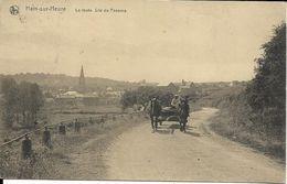 HAM-SUR-HEURE     LA ROUTE SITE DU PANAMA   ATTELAGE ( ECRITE  ) - Ham-sur-Heure-Nalinnes