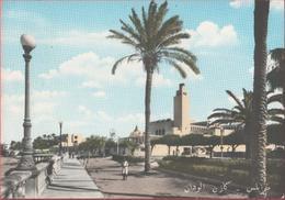 Tripoli (Libia). Casinò Uaddan. Colonie, Originale Non Copia. Non Viaggiata - Non Classificati