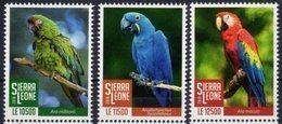 SIERRA  LEONE, 2018, BIRDS, PARROTS, MACAWS, 3v - Papegaaien, Parkieten
