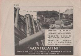 Advertising - Montecatini -  1940 - Non Classés
