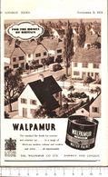 Advertising  - Walpamur Vernici - 1951 - Non Classés