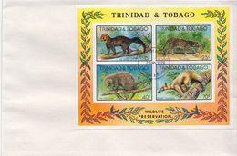 Trinidad Tobago SS On FDC - Francobolli