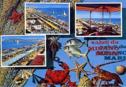 Saluti Da Misano Mare - Formato Grande Viaggiata Mancante Di Affrancatura – E 16 - Non Classés