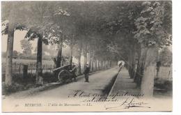 BETHUNE - Allée Des Marronniers - Bethune
