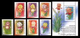 Uzbekistan 2002 Mih. 467/73 + 474 (Bl.35) Flora. Flowers. Irises MNH ** - Uzbekistán