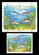 Uzbekistan 2006 Mih. 621/25 (Bl.41/42) Fauna. Fishes MNH ** - Uzbekistán