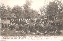 537) VELM - Pensionnat N.D. Du Rosaire  - Pelouse - Sint-Truiden