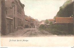 587)  Sint-Truiden - Rue Du Manège - Gekleurd - Sint-Truiden