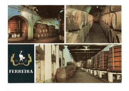 CPM - PORTO FERREIRA / PORTUGAL - Vignes
