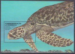 2001Dominica3084/B418Reptiles / Turtles - Turtles