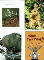 LAPINS /  Lot De 45 Cartes Postales Modernes écrites - Cartes Postales
