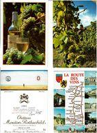 VIGNE - VIN / Lot De 70 CPM écrites - Cartes Postales
