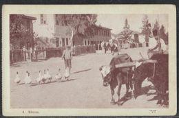 EKRON (Today Mazkeret Batya) - BEN DOV Postcard A Jewish Settlement Near Rehovot Palestine Israel - Judaica Juif - Judaisme