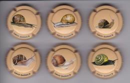 SERIE COMPLETA DE 6 PLACAS DE CAVA BARNILS DE CARACOLES (CAPSULE) CARACOL-SNAIL-ESCARGOT - Schuimwijn