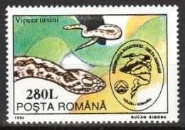 Roumanie 1994 - Vipère D'Orsini - Vipera Ursinii - Snakes