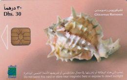 U.A.E.(chip) - Shellfish/Chicoreus Ramosus, Chip TH04, CN : 0415(letraset Writing), Used - Emirats Arabes Unis