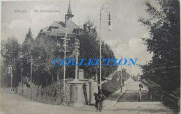SINAIA 1910, Strada CANTACUZINO, VILA, Felinar, Animata, Necirculata - Romania