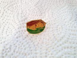 PINS SALLE POLYVALENTE DARNEY LES PROVENCHERES  88 VOSGES   / 33NAT - Pin's