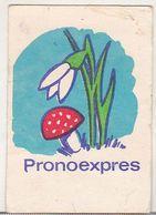 Romanian Small Calendar - 1980 Loto-Pronosport - Pronoexpres - Lottery Calendar - Calendars